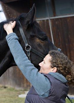 Pferdefahrpraxis im Chiemgau – Fachtierärztin für Pferde