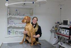 Dr. Sandra Messerer mit Patient im OP
