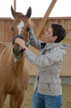 Selbstheilung in Gang setzen: Tierärztin Dr. Anja Adolphsen aus Wolfesing behandelt osteopathisch