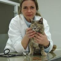 Traumberuf nie aus den Augen verloren  –  Brunhilde Sonnenschein eröffnet Tierarztpraxis in Neuburg