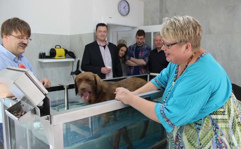 Tierarztpraxis für Physiotherapie und Osteopathie in Beselich, Mittelhessen