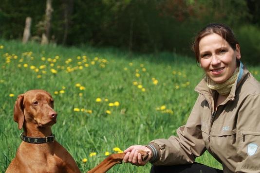 Tierarztpraxis Brunautal für Pferde und Kleintiere in Bispingen