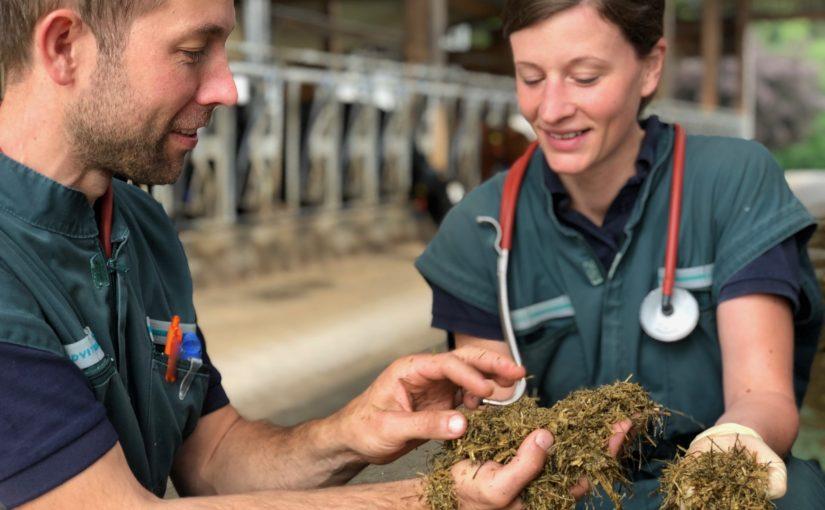 Zwei Tierärzte haben eine Idee – eine Praxis mit viel Know-how rund um Rinder in Oberschwaben