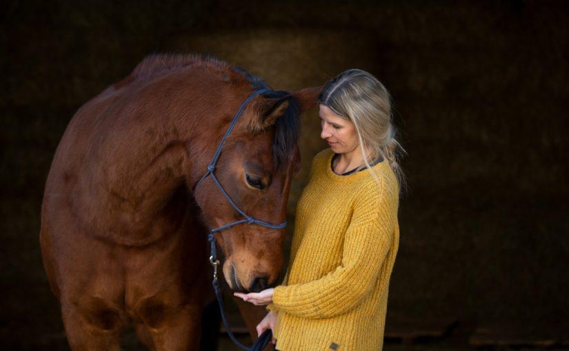 Süddeutschlands erste mobile Pferde-Internistin