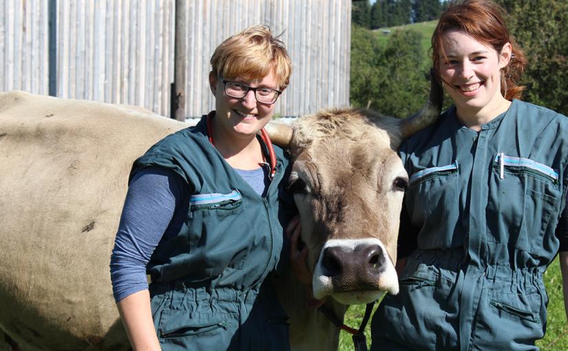 Tierarztpraxis Nesselwang: dynamische Tierärztinnen im Allgäu